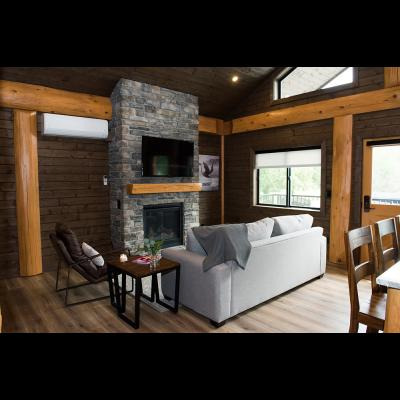 TV and Fireplace at 1-bedroom cabin